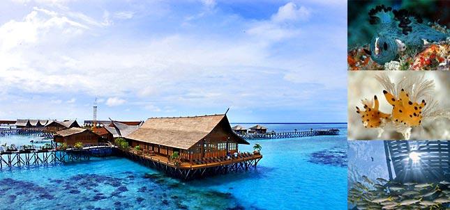 Kapalai resort sipadan - Sipadan dive resort ...